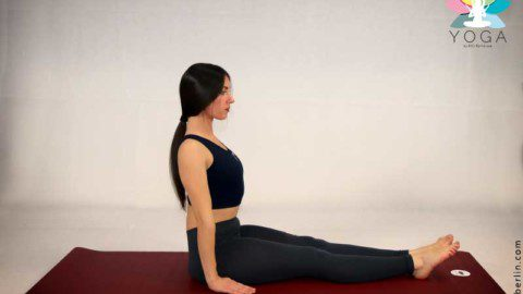 "yoga pose ""downward facing dog""  deliberlin  kochideen"