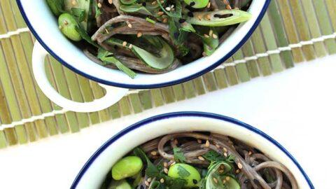 gekühlten Erdnuss-Soba-Nudeln Salat