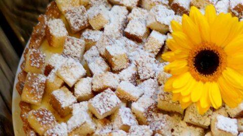 Italienische Mimosen-Tarte